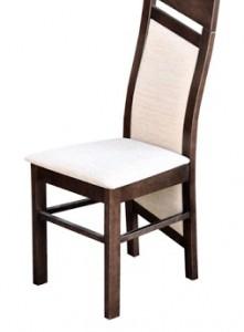 Moderní jídelní židle Rainy