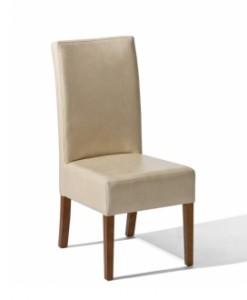 Jídelní židle Alexie